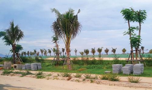 Sức hút của dự án Para Grus thuộc tổ hợp KN Paradise tại Cam Ranh