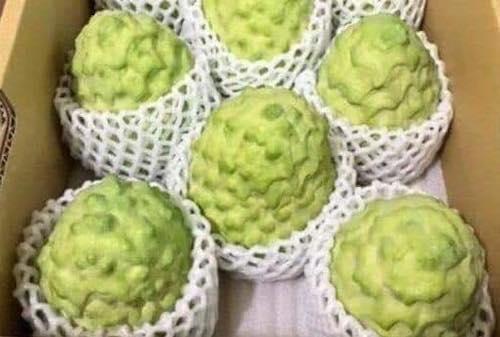 Những trái cây Đài Loan giá tiền triệu hút khách Việt