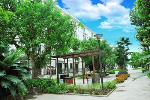 Cơ hội sở hữu căn hộ khi mua nhà vườn Pandora