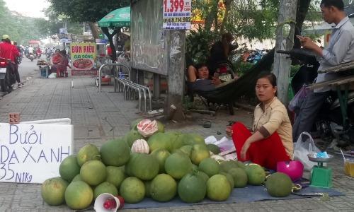 Nếu các năm trước Trung Quốc ồ ạt nhập bưởi da xanh Việt thì năm nay họ giảm thu mua. Ảnh: Hồng Châu.