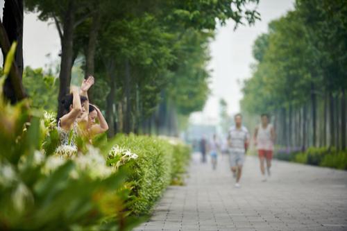 Không gian sống dành cho gia đình đa thế hệ tại ParkCity Hanoi