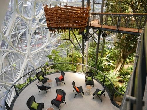 Nhờ có 40.000 cây xanh được mang về từ khắp nơi trên thế giới, bên trong tòa nhà duy trì nhiệt độ 20-22 độ C, độ ẩm 60%. Đây sẽ là nơi giúp nhân viên Amazon thư giãn, ngoài ra cũng nhằm mục đích trở thành không gian tuyển dụng.