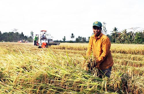 Sáu đề xuất cho nông sản Việt sau 'thập kỷ chuyển mình'