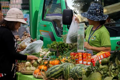 Người thành thị săn tìm thực phẩm sạch