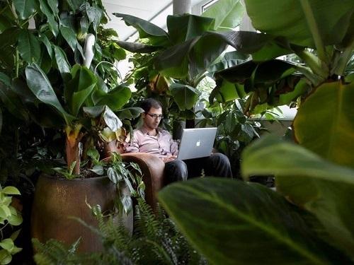 Google Campus tại Thụy Sỹ có hàng chục phong cách thiết kế góc làm việc khác nhau, đáp ứng nhu cầu về không gian sáng tạo cho nhân viên.