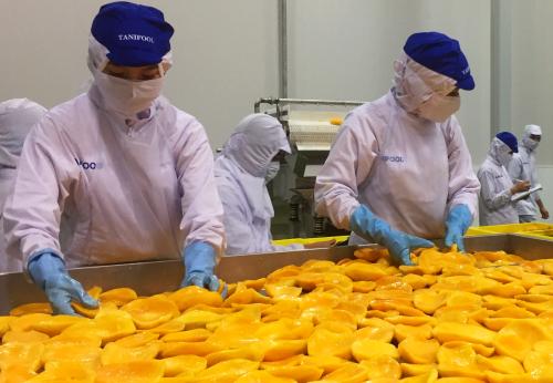 Dây chuyền chế biến trái cây trong nhà máy Tanifood. Ảnh: N.H