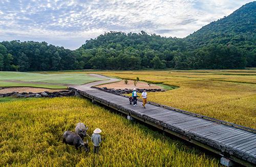 Sân golf 18 hố tại Laguna Lăng Cô trở thành điểm đến mục tiêu của những người yêu golf trong nước lẫn quốc tế.