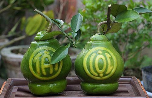 Loại bưởi Tài lộc - một sản phẩm được anh Văn Anh giới thiệu ra thị trường.
