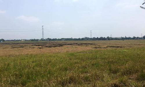 Đất nền càng xa trung tâm TP HCM, được dự báo càng có biên độ tăng giá cao trong năm 2019. Ảnh: Vũ Lê