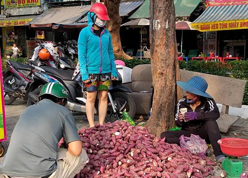 Khoai lang Nhật giá rẻ bán đầy vỉa hè Sài Gòn