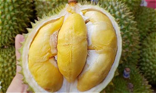 Những loại trái cây sốt giá nhờ Trung Quốc tăng mua - 2