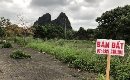 Biển bán đất được cắm ở nhiều lô đất trong một dự án tại trung tâm thị trấn Cái Rồng, huyệnVân Đồn. Ảnh: Anh Tú Nỗ lực thổi giá bất thành của cò đất Vân Đồn