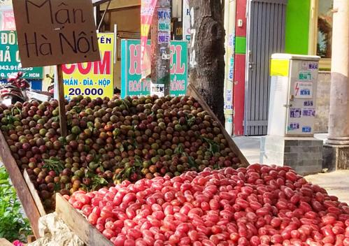 Mận Hà Nội bán vỉa hè với giá 250.000 đồng một kg. Ảnh: Thi Hà.
