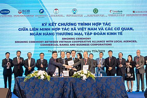 Viện Kinh tế Nông nghiệp Hữu cơ, Liên minh hợp tác xã Việt Nam, Công ty Lavifood và Ngân hàng SCB ký kết một hợp đồng nguyên tắc nhằm xây dựng nhiều trung tâm hỗ trợ nông dân, đặc biệt là hợp tác xã. Ảnh: Bảo Zoãn