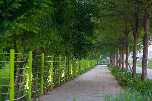 Những con đường nội khu rợp bóng cây xanh tại Hồng Hà Eco City.