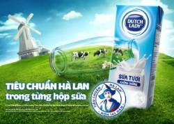 anh 5332 1557805246 - Công nghệ cao trong chăn nuôi bò, thu hoạch sữa của Cô Gái Hà Lan