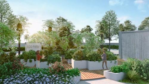 Phối cảnh vườn rau hữu cơ tại Palm Garden. Chi tiết liên hệ 02862858868, email info@palm-city.com.vn hoặc truy cập tại đây.