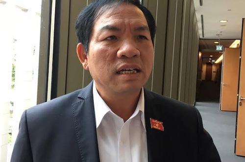 Ông Lê Hồng Tịnh - Phó chủ nhiệm Uỷ ban Khoa học, công nghệ và môi trường. Ảnh: HT
