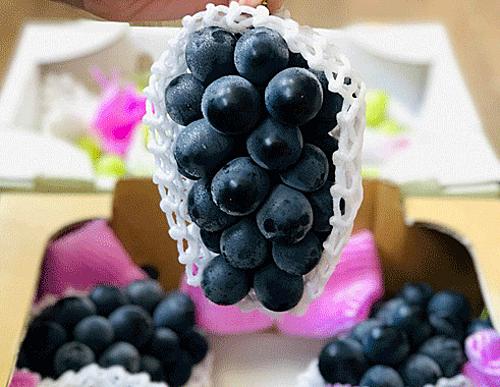Một thùng nho rượu Nhật nhập về Việt Nam gồm 6 chùm.