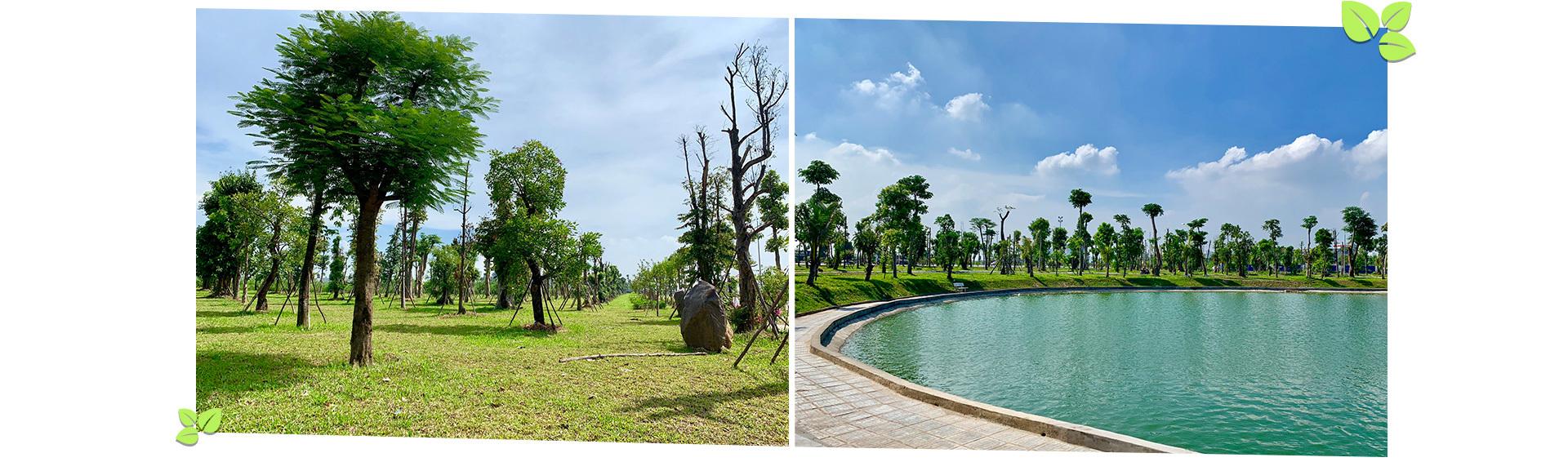 Bên trong khu đô thị 'phủ xanh' giữa lòng Hà Nội Bên trong khu đô thị 'phủ xanh' giữa lòng Hà Nội Anh 2 6129 1565951851