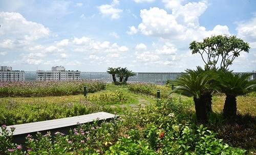 Không gian phủ đầy cây xanh tại dự án Imperia Sky Garden - ảnh 3