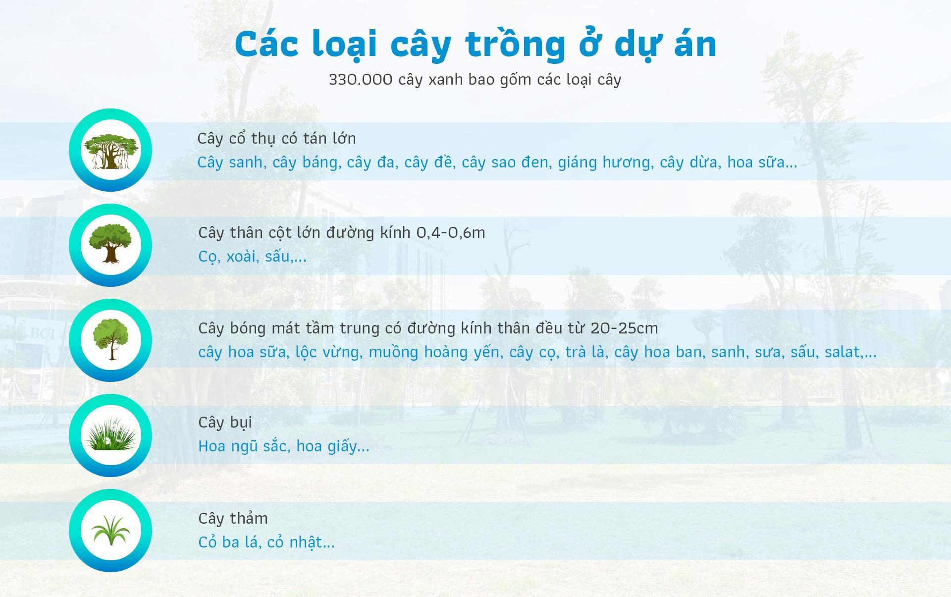 Bên trong khu đô thị 'phủ xanh' giữa lòng Hà Nội Bên trong khu đô thị 'phủ xanh' giữa lòng Hà Nội Info 2 7168 1565263537 5531 1566267787