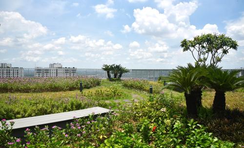 Khu vườn chân mây trên tầng thượngImperia Sky Garden.