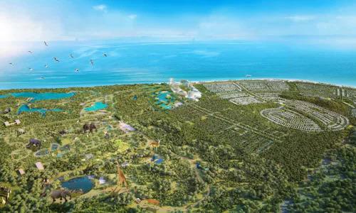 Bà Rịa - Vũng Tàu ủng hộ mở safari Hồ Tràm - ảnh 1