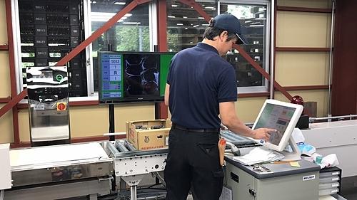 Bước đóng gói phân loại nho tại Okayama.
