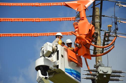 Công nhân điện lực TP HCM sửa chữa trên đường dây. Ảnh: Trần Trung