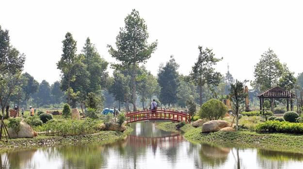 Vườn Nhật Bản phân khu The Ruby có cảnh quan cây xanh đẹp mắt, trong lành