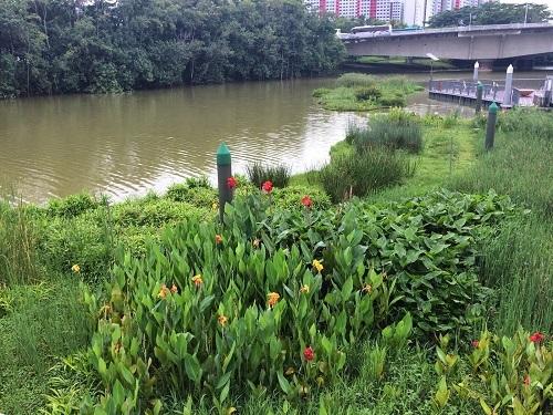 Công nghệ xử lý nước tự nhiên và thiết kế tuần hoàn tạo nên không gian sống xanh tại dự án.
