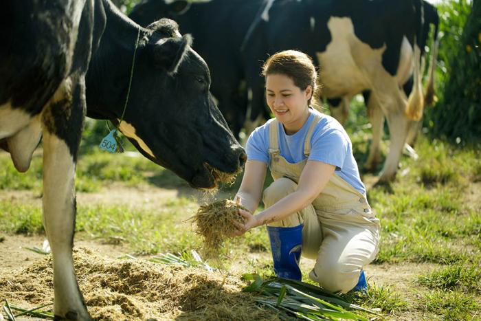 Quy trình 20 phút vàng bảo quản sữa của Cô Gái Hà Lan - ảnh 3