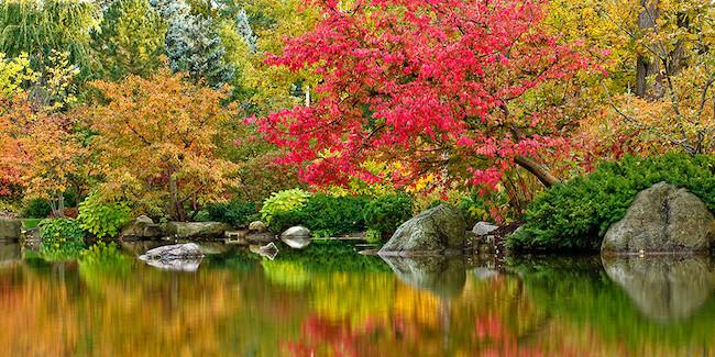 Xen giữa những thác nước cầu vồng quy mô là đường dạo bộ nhiệt đới ven hồ dài gần 1.000m. Trên cung đường này, chủ đầu tư bố trí gần 40 khu vườn nhiệt đới, hội tụ hàng trăm loài hoa và thực vật quý hiếm.40 khu vườn này được thiết kế cho từng phân khúc khách hàng chuyên biệt như: vườn cổ tích và vườn khám phá cho trẻ nhỏ; vườn dưỡng sinh và cờ tiên cho người già; vườn ion để trị liệu sức khoẻ; vườn âm nhạc cho người trẻ; vườn Hera cho gia đình; vườn BBQ cắm trại; vườn hoa hồng 500m2; vườn hoa ôn đới; vườn thiền thuỷ cực; vườn thuỷ sinh... Với thiết kế đa dạng, mỗi cư dân tại Sunshine Diamond River đều tìm thấy một không gian được thiết kế dành riêng cho mình.