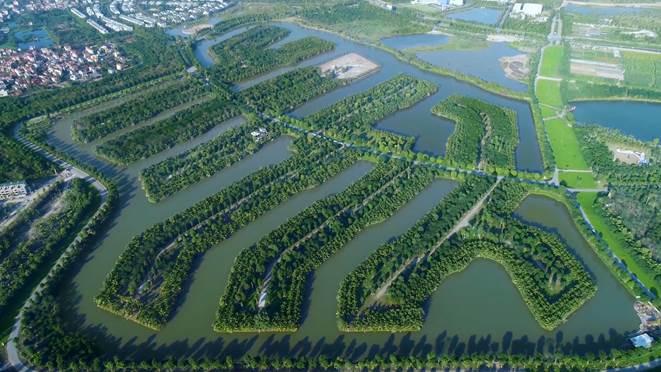 Không gian sống xanh cho người giàu tại biệt thự đảo Ecopark - ảnh 2