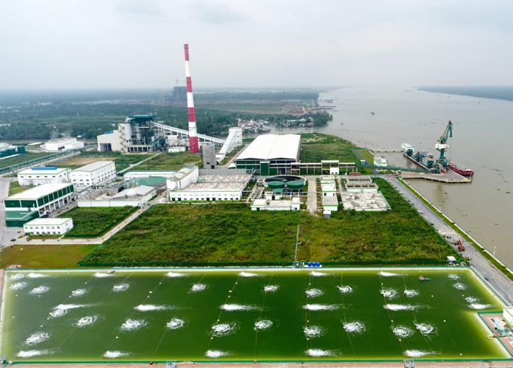 Công ty sản xuất giấy Lee & Man được vinh danh top 100 doanh nghiệp bền vững hai năm qua, thể hiện tiềm năng mở rộng sản xuất của doanh nghiệp.