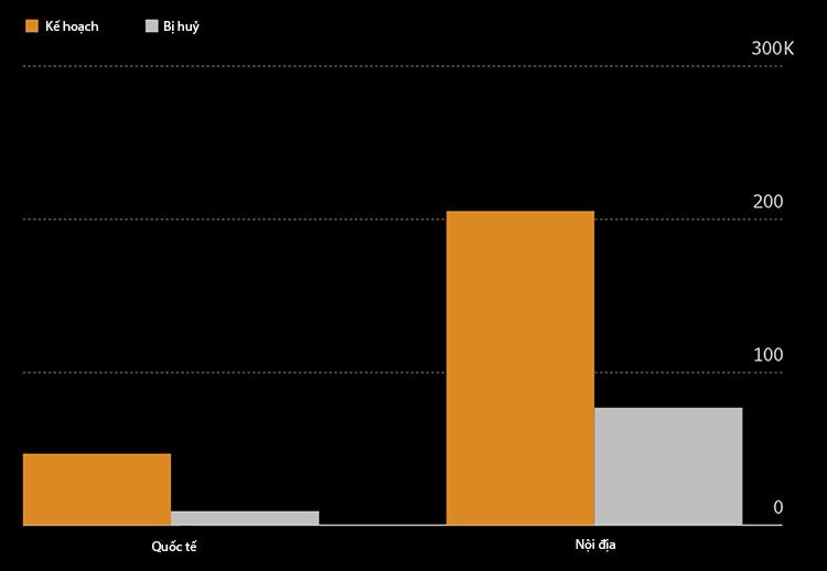 Số lượng chuyến bay đã lên lịch nhưng bị huỷ do dịch bệnh từ 23/1 đến 11/2. Nguồn: Bloomberg, Cirium