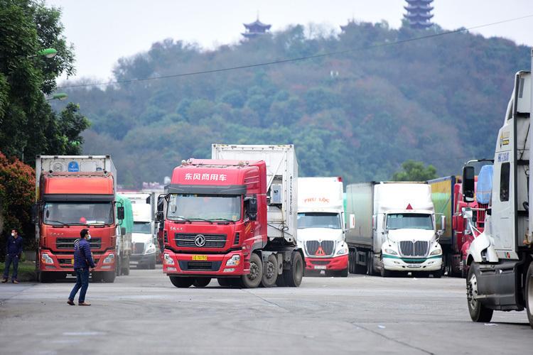 Gần 700 container nông sản vẫn ùn ở cửa khẩu - Kinh Doanh
